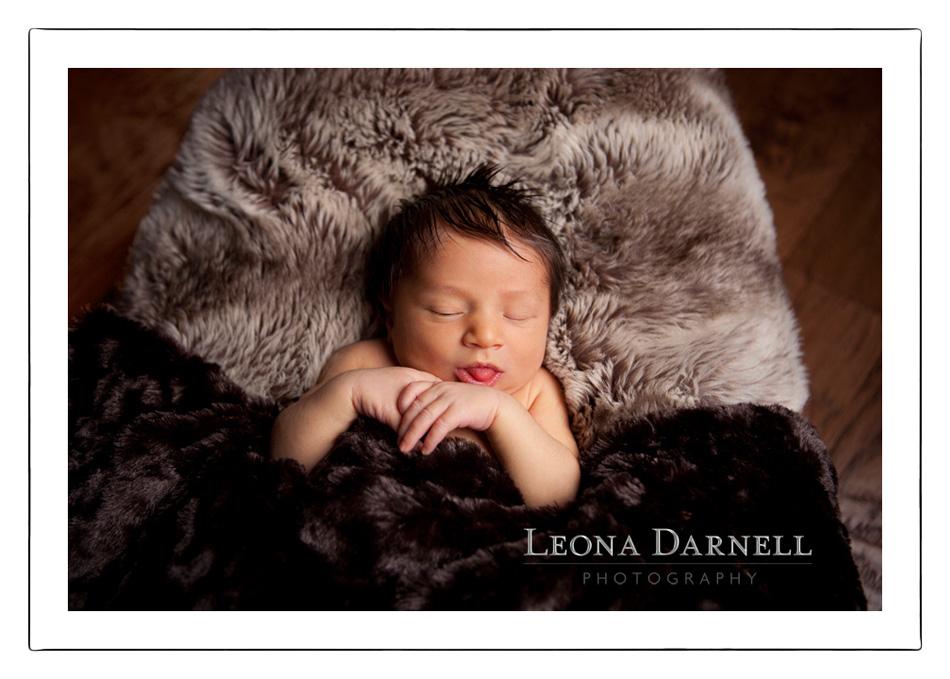 Newborn Photographer, Central Coast Newborn Photographer, Child Photography, Portrait Photographer, Fine Art Portraits on the Central Coast